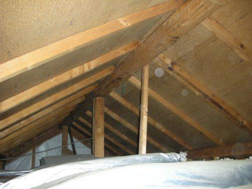 天井裏の調査