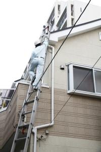 雨漏りの現地調査のため梯子で屋根に上る作業員、