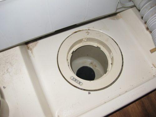 洗浄してきれいになった洗濯機の排水管