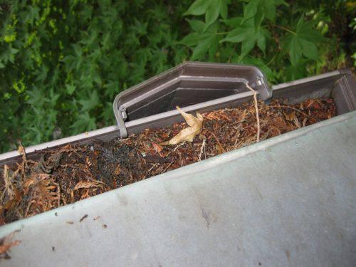 落ちてきた枯葉で雨樋が詰まった状態(左からの撮影)
