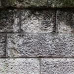 外壁の頑固なコケを落とす方法・防止策を徹底検証!