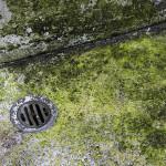 効果はどれくらい?排水管をきれいにする高圧洗浄の基本知識