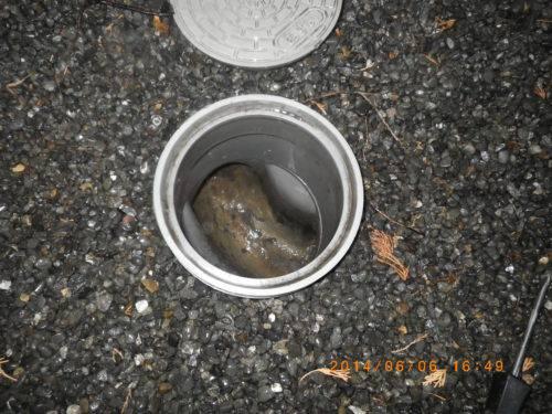 洗浄前の排水管