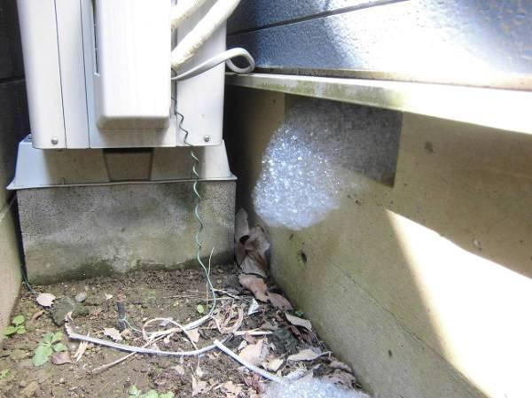 床下換気口からシロアリ発泡施工の泡が噴き出してきている