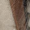 蜘蛛の巣撤去アイキャッチ画像