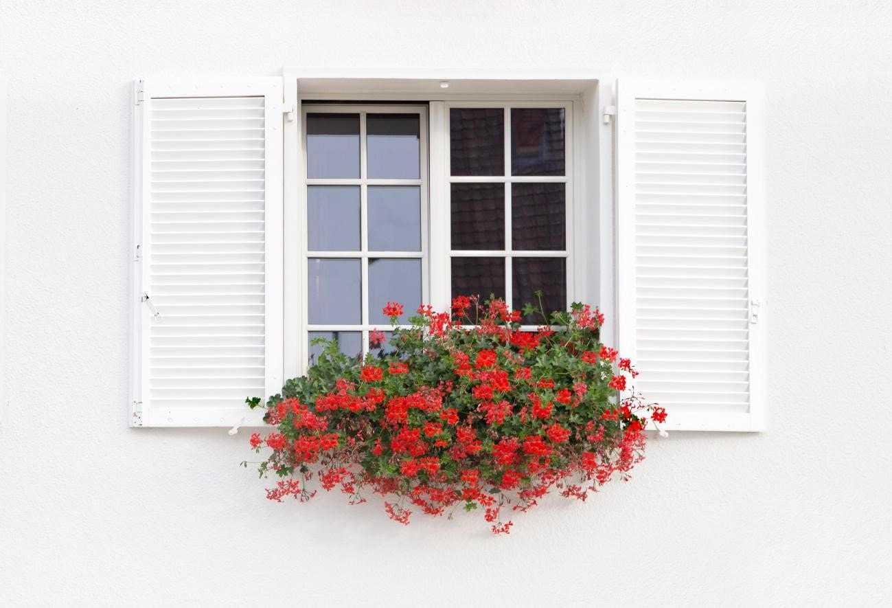 窓の断熱はこうするべき!防寒、防熱、結露対策から始まる効率の良い方法