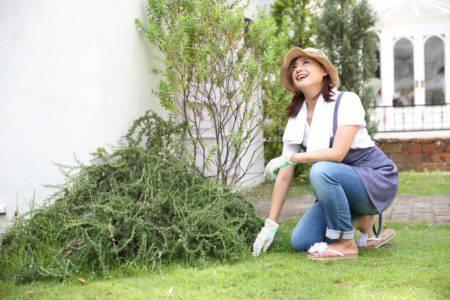 草むしり 女性