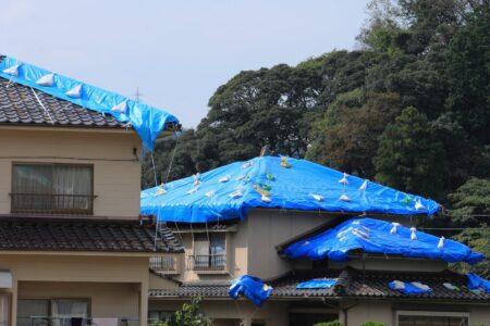 ブルーシート屋根